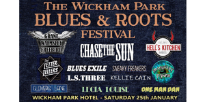 The Wickham Park Blues & Roots Festival