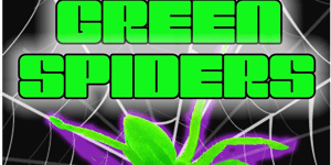 The Green Spiders
